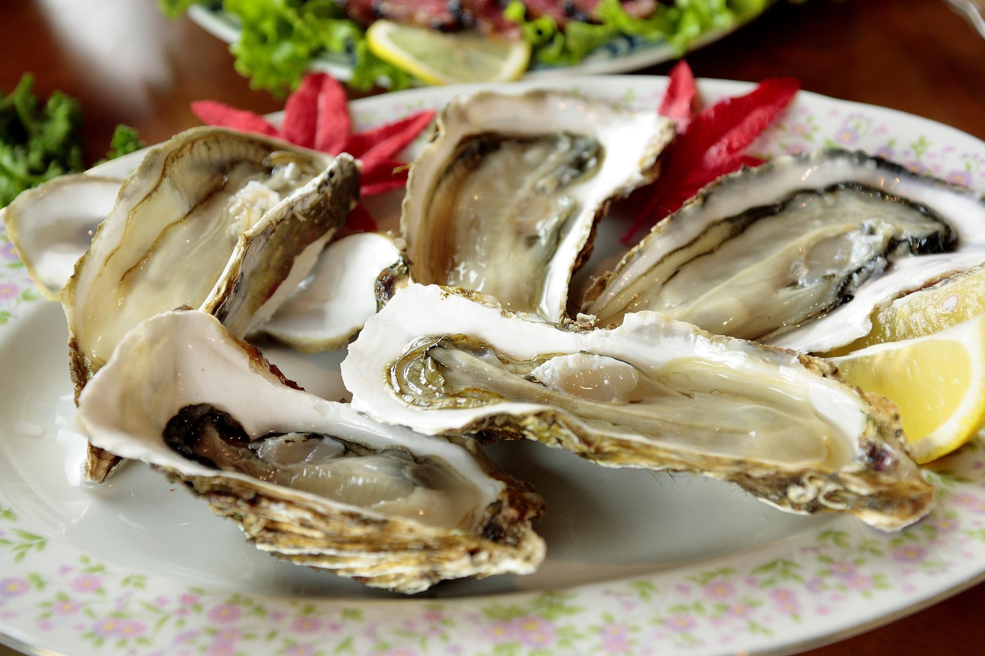 Oyster Feast   caleido-dp pixabay.com