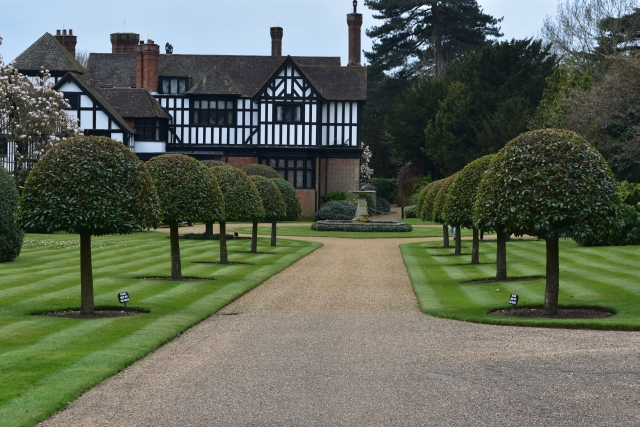 bay tree lined avenue at ascott house on the buckinghamshire bedfordshire border