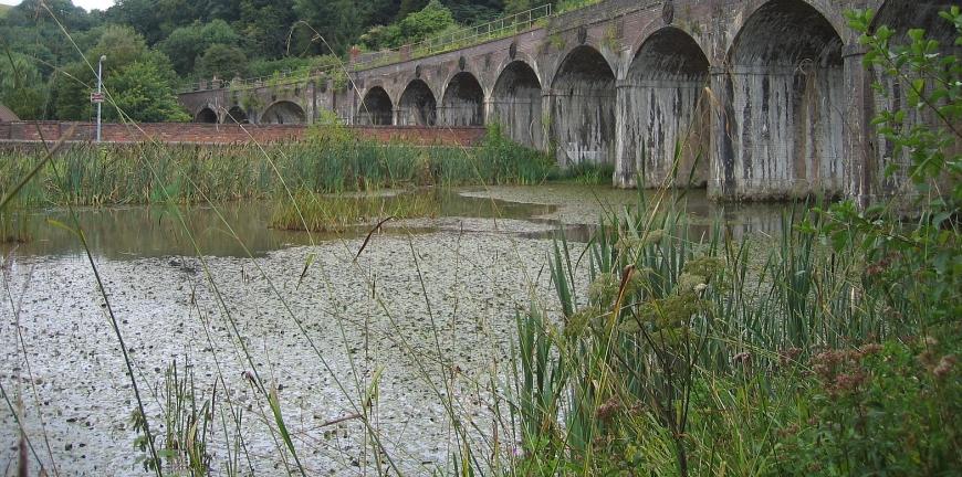 Nature reserve in Coalbrookdale, Shropshire © essentially-england.com