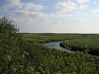 Blakeney Marshes © essentially-england.com