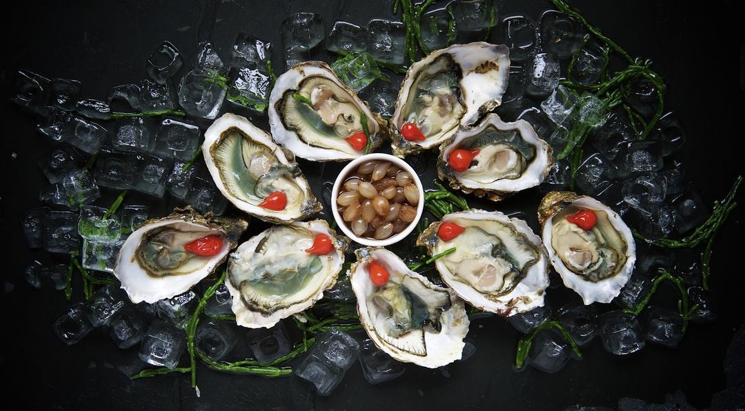 Oysters © Andy Chilton unsplash.com