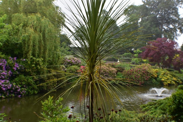 Views of the Dingle © essentially-england.com